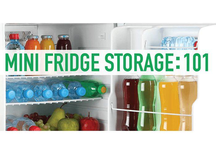 Mini Fridge Storage