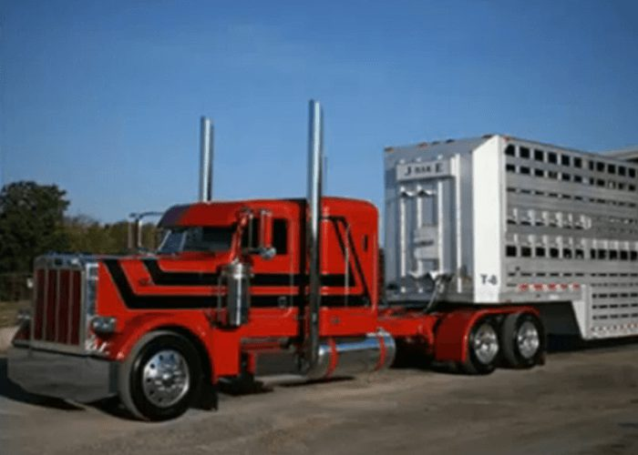 ELD Mandate Livestock Haulers Plan To Protest In Washington