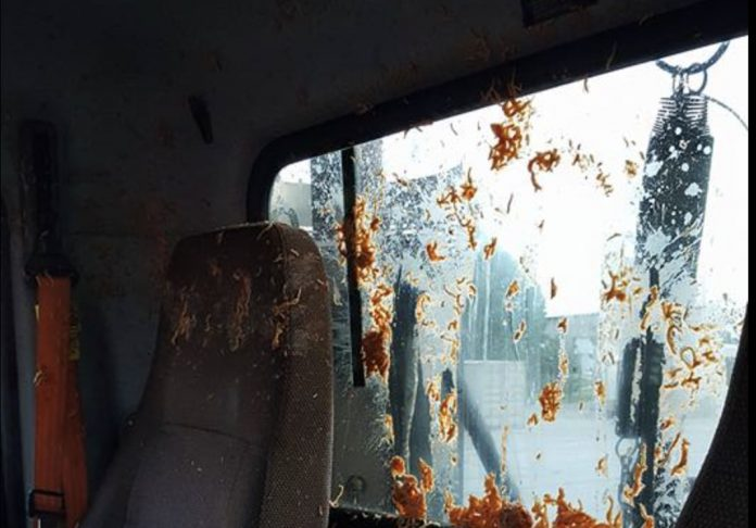 AFTERMATH: Bag Of Spaghetti Thrown From Overpass Onto UPS Truck